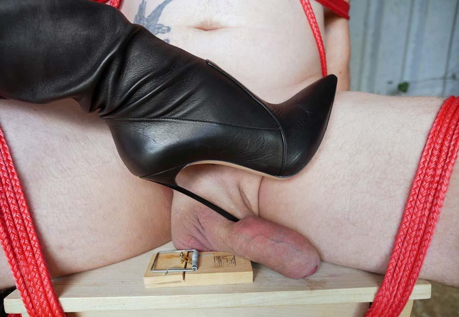 cock torture punishment