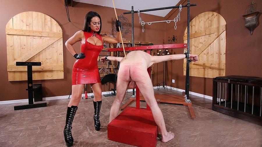 merciless femdom torture cane