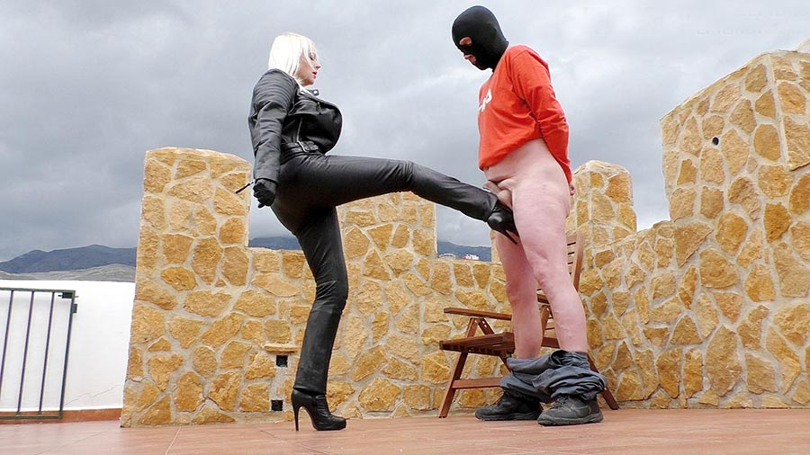 leather mistress kicking slave's balls